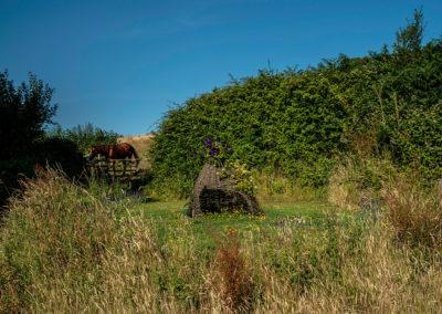 EDE-67-06-Wigwam-and-Caesar-(friendly-horse)
